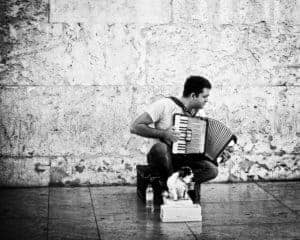 Lisbon Busker and Dog, Placo do Commercio
